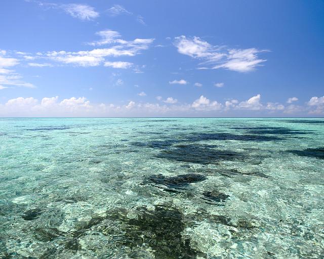 Aguas paradisíacas transparentes en Maldivas