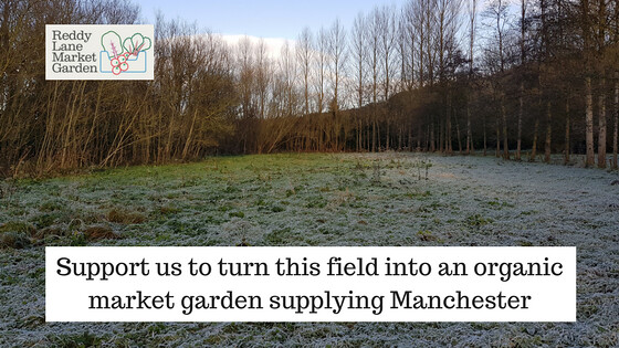 Support us to turn this field into an organic market garden supplying Manchester
