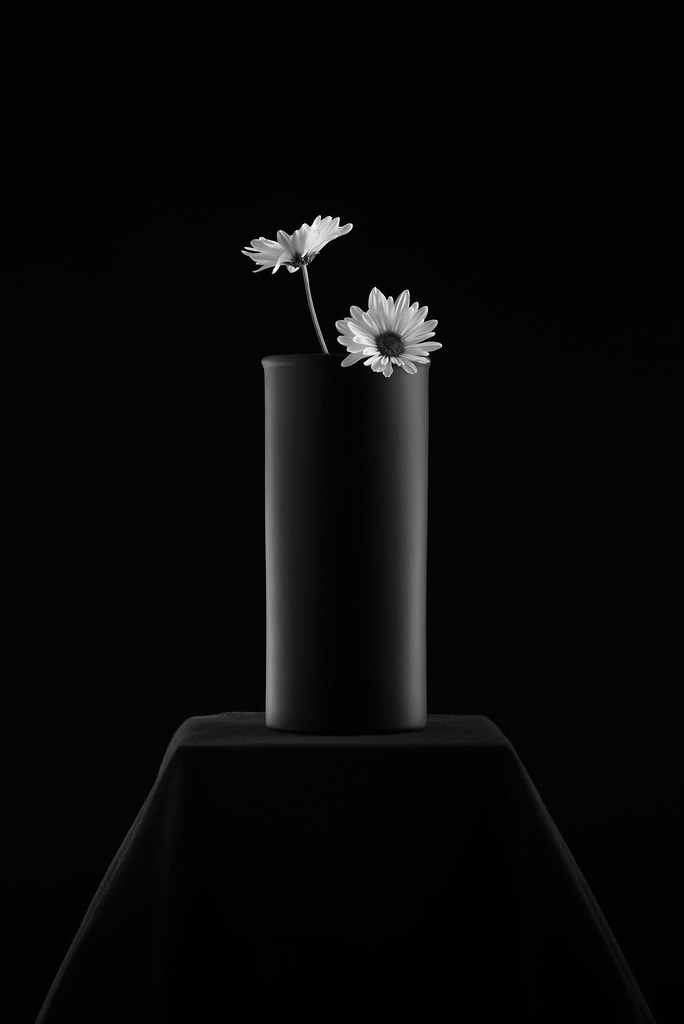 Round Black Vase With Two Gerberas Dsc2894 This Is One Im Flickr