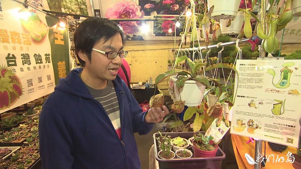 945-1-3建國花市這個攤位的食蟲植物,幾乎來自國外,很多人不知道,其實台灣也有食蟲植物。