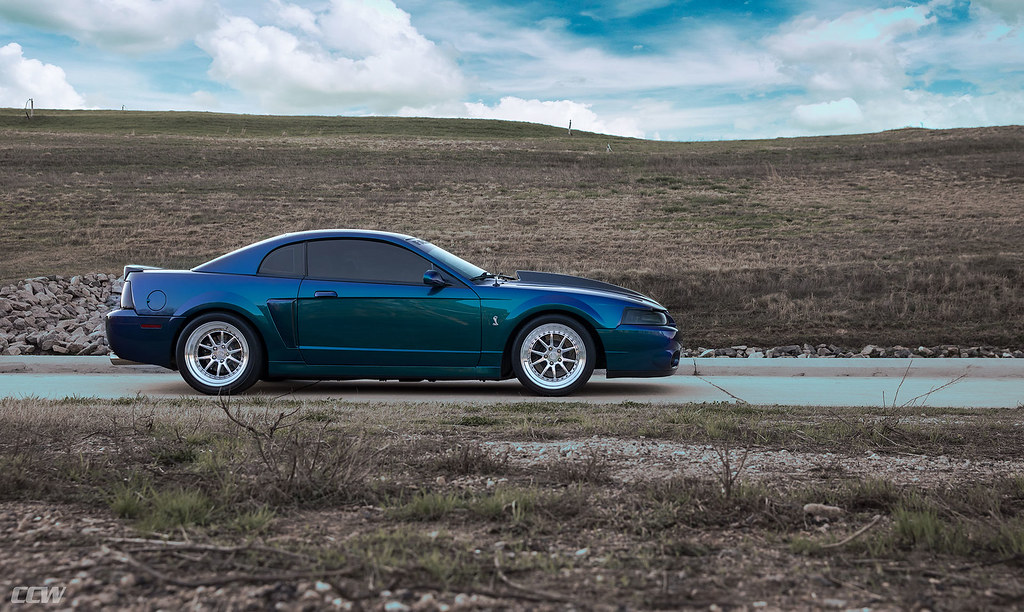 03 Mustang Terminator Pics