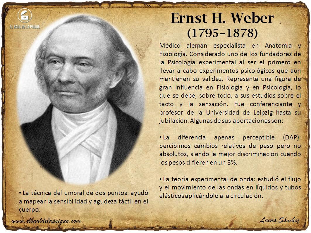 El Baúl de los Autores: Ernst H. Weber
