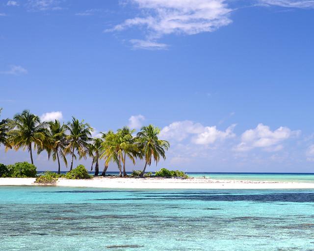Isla con palmeras en aguas paradisíacas en Maldivas