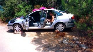 Le chien du Vivaghju à notre retour à San Gavinu