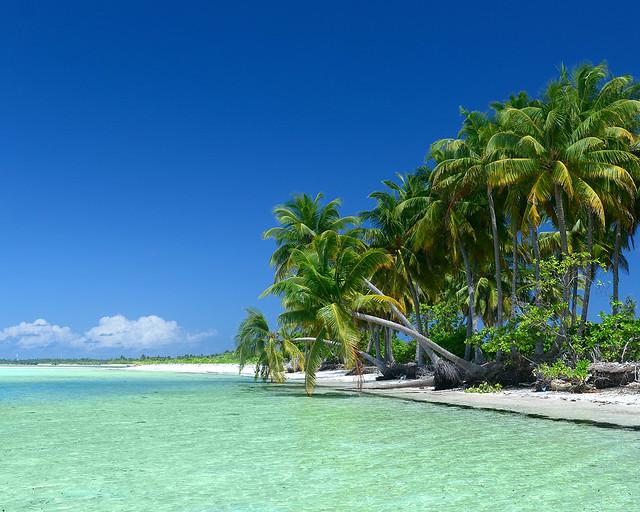 Palmeras sobre el agua en una de las islas más espectaculares de Maldivas