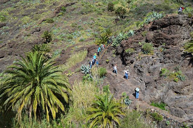 Walking group Masca Barranco, Tenerife