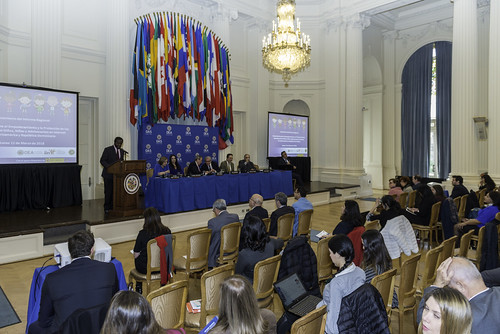 OAS-IIN Report Analyzes Empowerment and Protection of the Rights of Children and Adolescents on the Internet