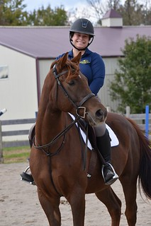 Profile On: Tracy Beavers, the Printable Pony | Equus Education