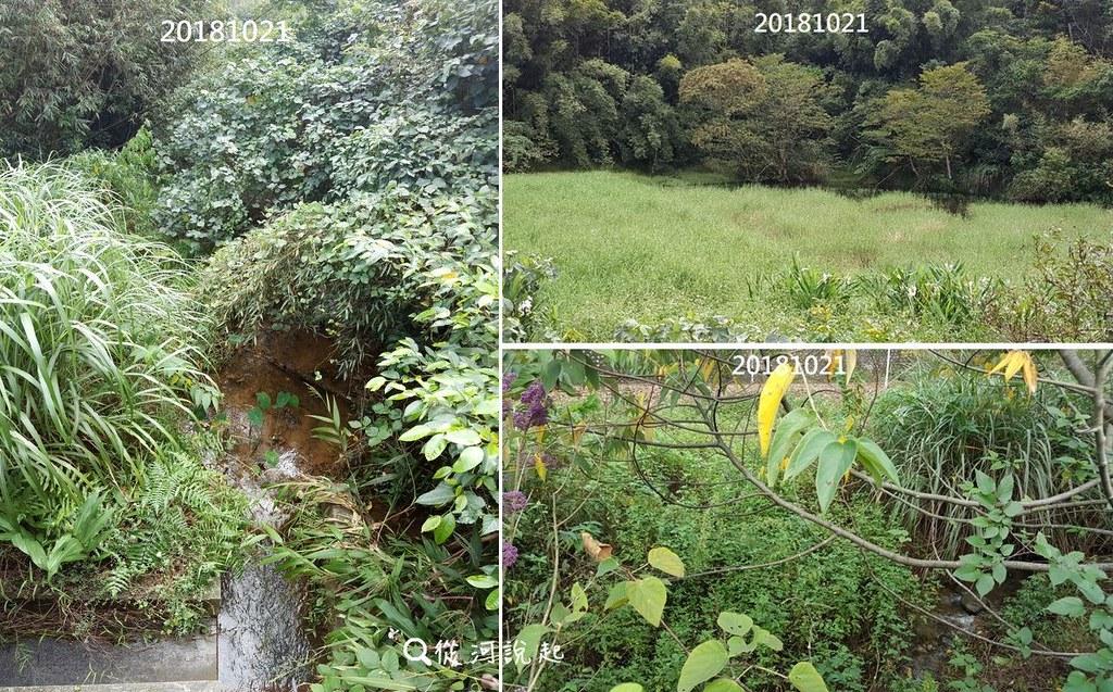 9_無名溪的自然溪段環境