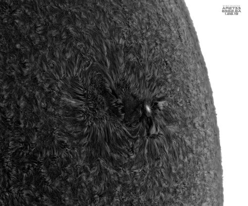 AR2733_150mm_DS_HA_BW_Inverted_01282019 | by Mwise1023