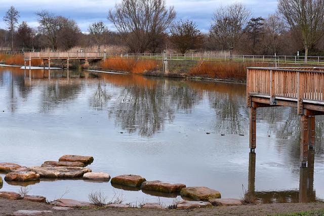 Fischkinderstube Edingen-Neckarhausen Ende Januar 2019 ... Fotos: Brigitte Stolle