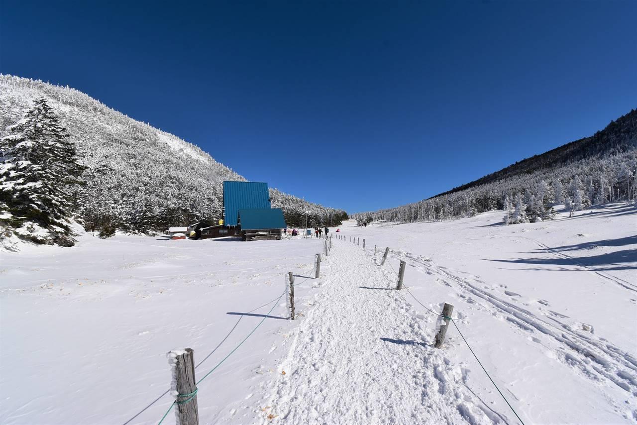 縞枯山荘の雪原