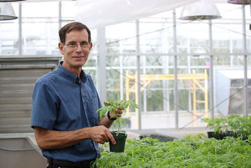 Joseph Koepper is pictured in a greenhouse with plants.