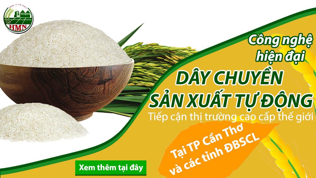 Chế biến xuất khẩu lúa gạo Cần Thơ