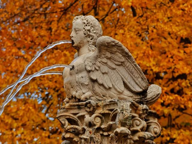 Detalle de Aranjuez en otoño