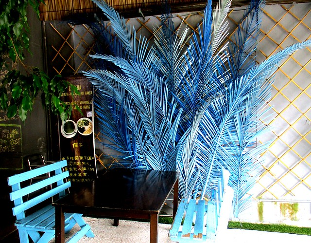 Coconut leaves, blue