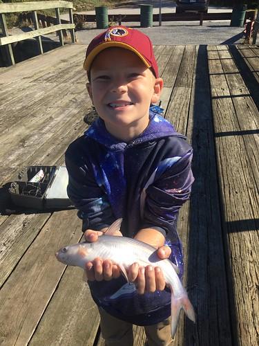 Photo of Boy holding channel catfish.