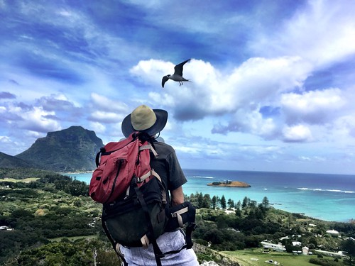 Lord Howe Island. It's you he wants, off yourself to him. | by miaow