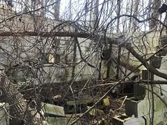 Abandoned Radio Shack Interior