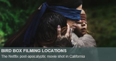 Bird Box Location