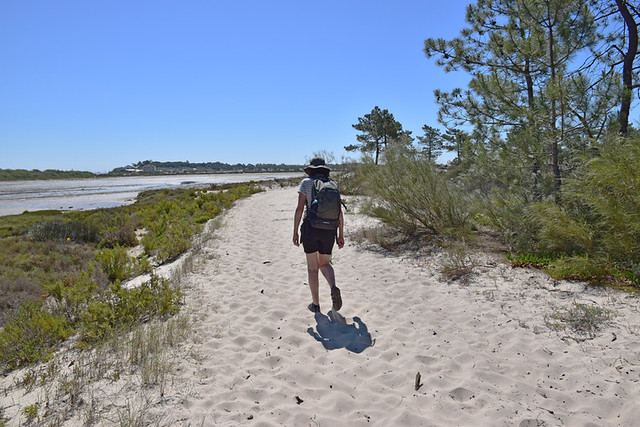 Walking around the inland lagoon, Troia, Portugal