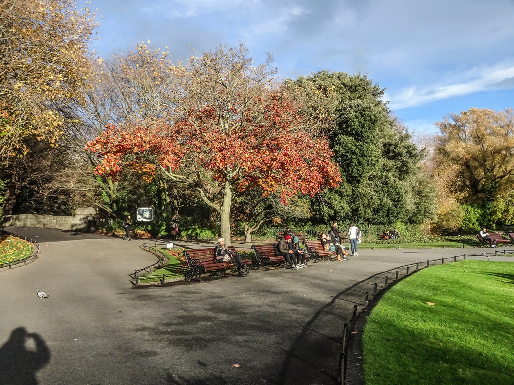 ST. STEPHEN'S GREEN IN AUTUMN 015