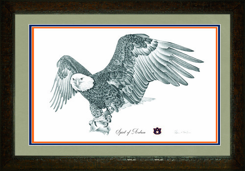 Drawing of a bald eagle