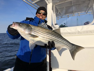Photo of man holding a beautiful striped bass he caught