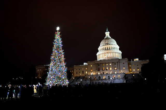 Capitol Christmas Tree.Noble Christmas Tree Illumines Capitol Hill Usda
