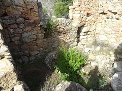 Ghjaducci : l'intérieur du moulin avec une meule tournante