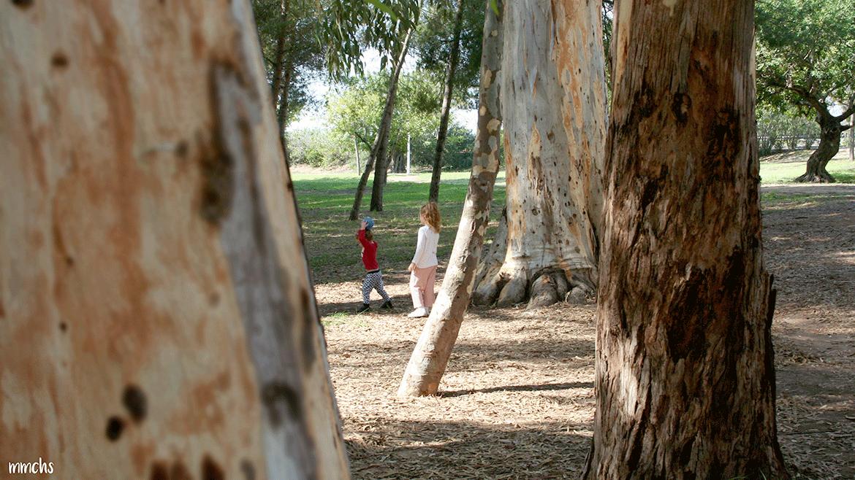 parque San Vicente Liria