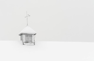 White on White | by Wits End Photography
