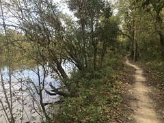 Spillway Trail Singletrack