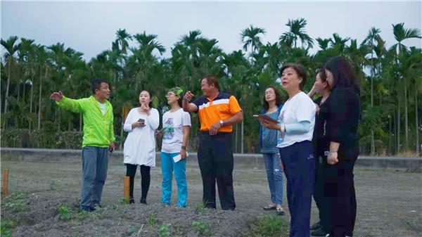 這是林先生拿出的一公頃土地,用於開展「千人種紅豆」公益體驗活動。