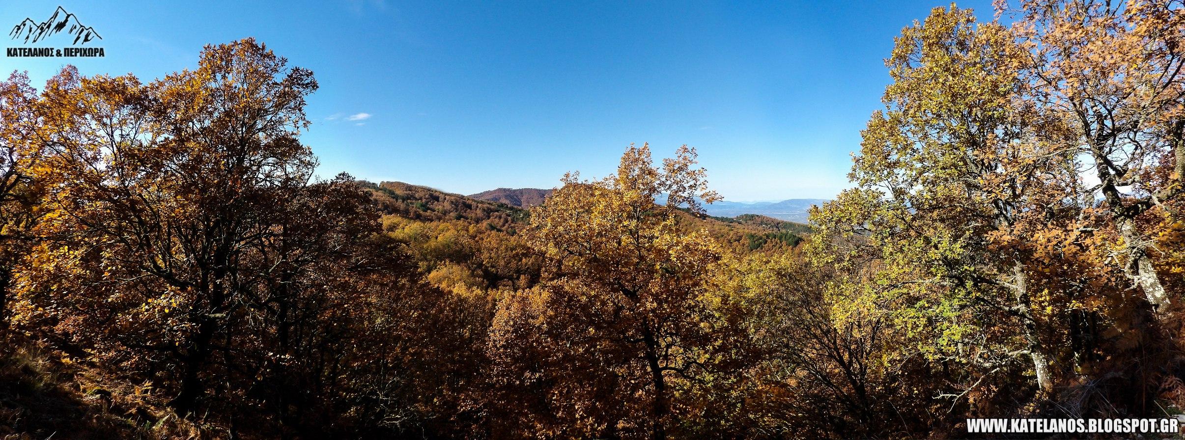 ορος αρακυνθος φυλλοβολλα φθινόπωρο