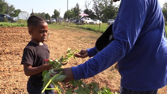 A young girl helps in the garden.