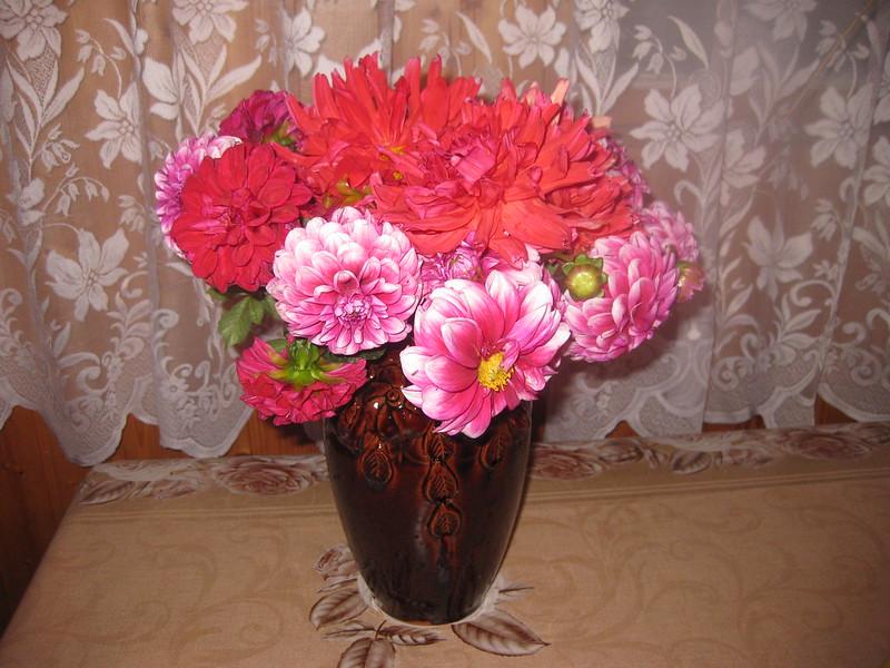 Цветы в террасе