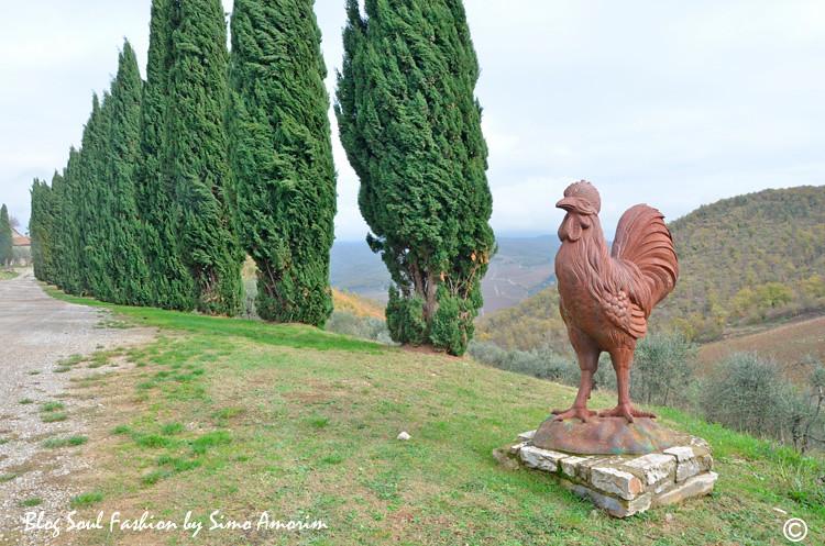 Logo na chegada ao Querceto di Castellina a gente já se apaixona pela beleza do lugar