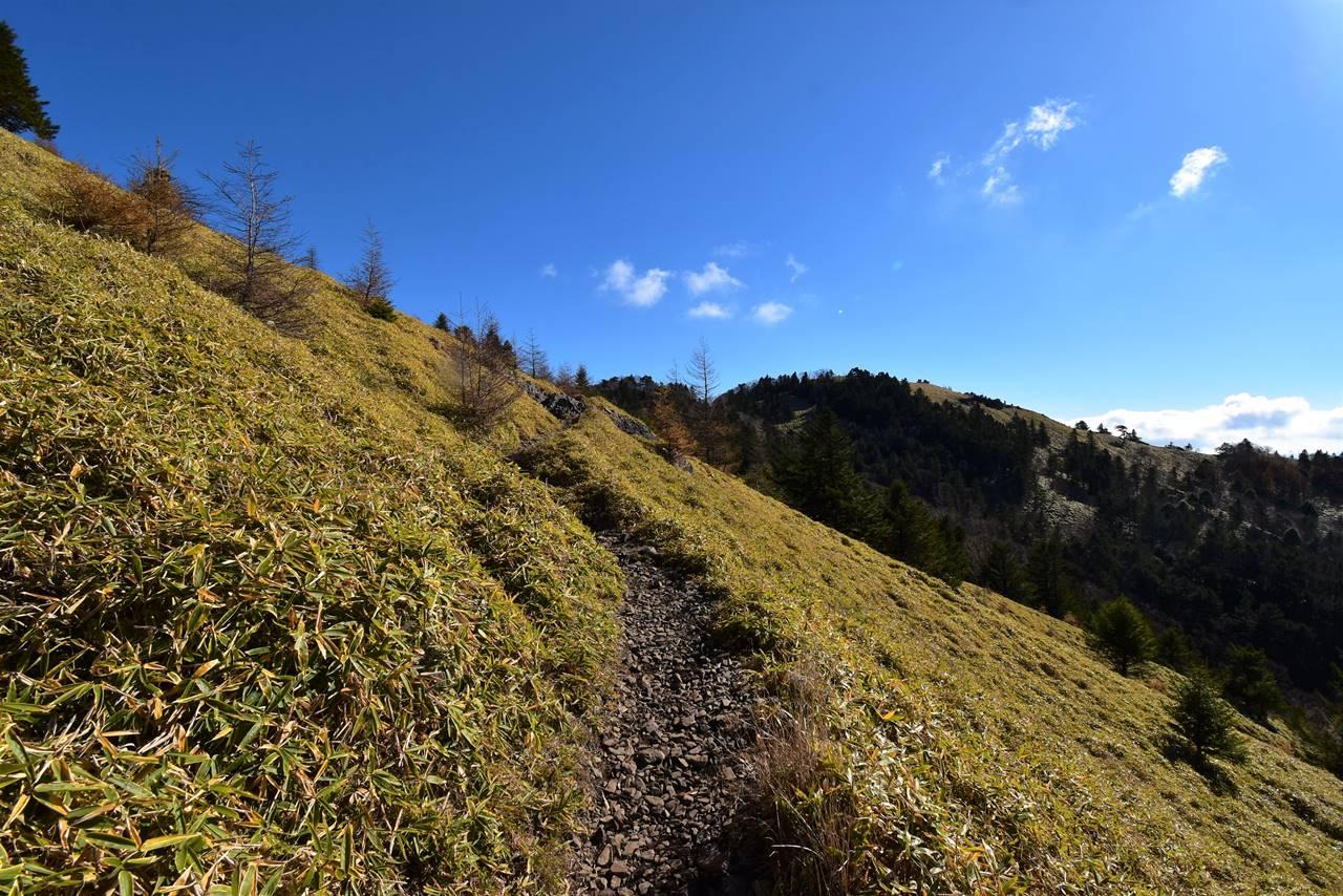 石丸峠 草原の登山道