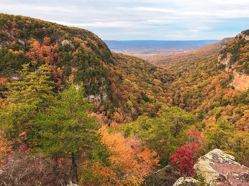 Fall color at Cloudland Canyon State Park