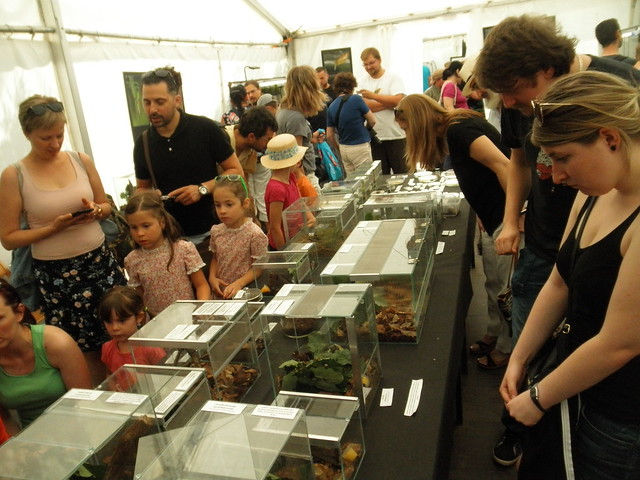 Big exhibition of invertebrates
