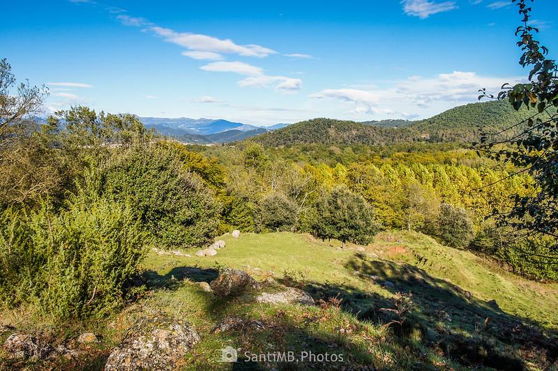 Paso por los pastos entre el Bosc de l'Avellana y la carretera del Corb