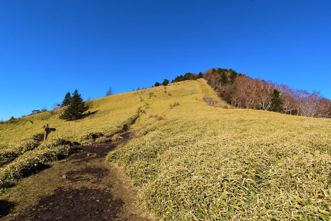 石丸峠から熊沢山