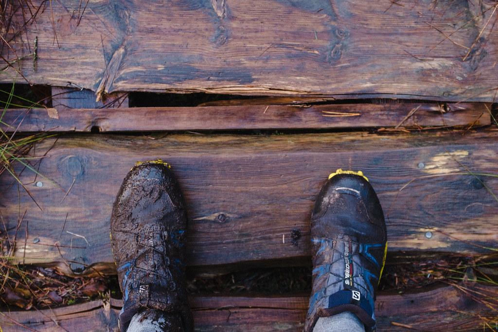 Salomon Speedcross 4 GTX trail running shoes, wet and dirty