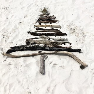 245/365 • 🎄decorating the beach 🎄 • . . #christmas #passagebeach #driftwood #christmastree #freycinet #tasmania #love #natureart #tasmaniagram #discovertasmania #windy #wilderness1100 #sailing #bellalunaboat #cruising #explor | by miaow