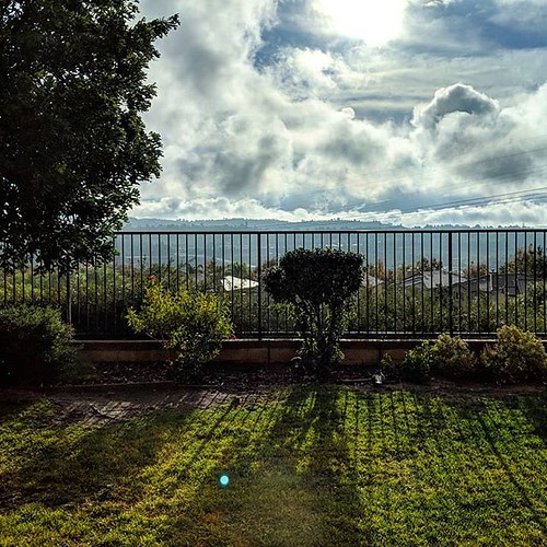 Thanksgiving View #clouds #sky #fence #sunlight #tree #shadows #green #grass #thankful #for #alittle #rain | by brendan-c