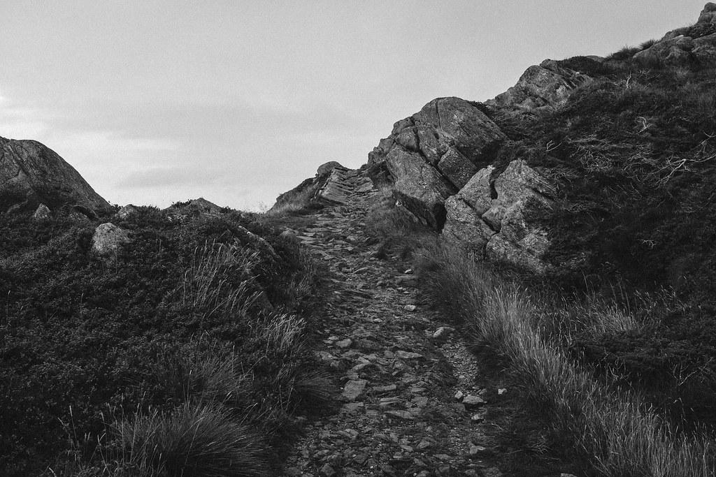 trail in the mountain in black and white.