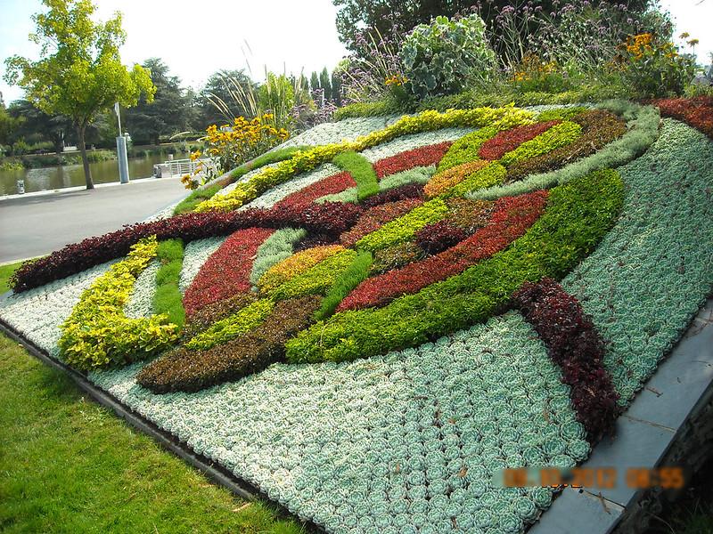 DSCN6533 colorful plant mosaic
