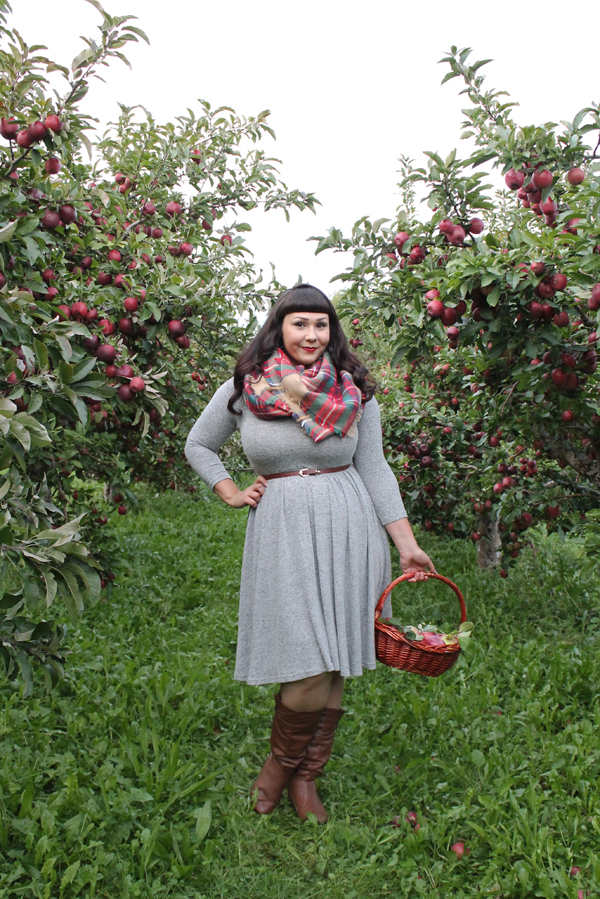 where to pick apples upstate ny