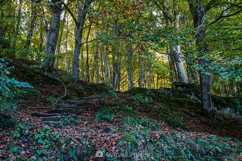 Escaleras a las Roques Encantades